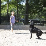 A girl plays in Homer's Run, the dog run inInwood Hill Park.