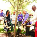 Planting the Tree of Peace.