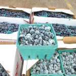 """""""They were the first I had in years,"""" said recipient Frances of her blueberries."""