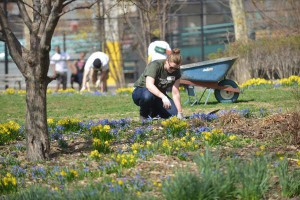 Help beautify Fort Tryon Park in celebration of Earth Day