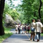 Hiking for Health </br> Excursionando por Salud y Felicidad
