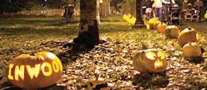 Prize the pumpkin </br> Premio a las calabazas