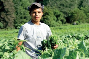 It is estimated that over 100,000 migrant farm workers would be affected.