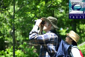 Come and spot warblers, vireos, thrushes and more.