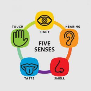 Create your sensory story.