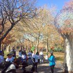 At White Park.