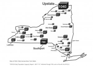 This graphic demonstrates the number of solitary housing units in New York's state prisons. Source: CAIC