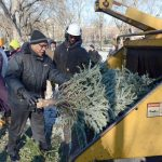 There are nearly 80 locations to which trees can be brought.