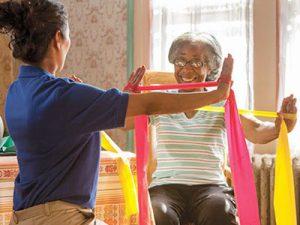 MLTC plans focus on long-term care services.