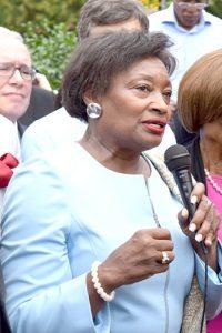 State Senator Andrea Stewart-Cousins.