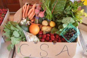 CSAs support farming communities.