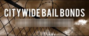 The use of commercial bail bonds grew by 12 percent in the past two years.