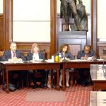 TLC Commissioner Meera Joshi offers testimony.