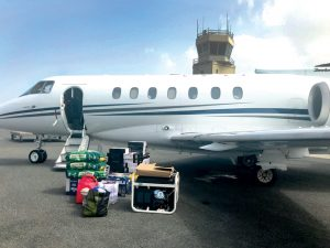 The organization has used private planes to bring rescued dogs to the mainland.