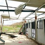 The storm destroyed many animal care clinics.