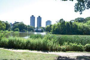Harlem Meer está ubicado en el extremo norte de Central Park.