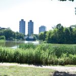 The Harlem Meer is located at the northern end of Central Park.